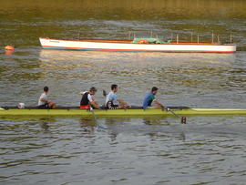 Half of Thames Cup VIII training on Tideway