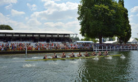 Thames Cup