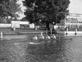 Unknown coxless four training at Henley