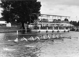 Thames Cup VIII training