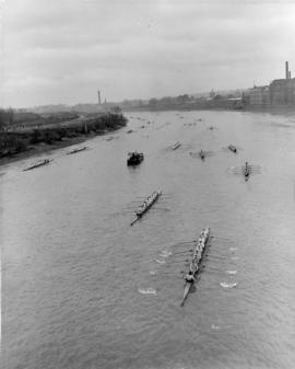 Start of the Head of the River Race 1951, from Chiswick Bridge
