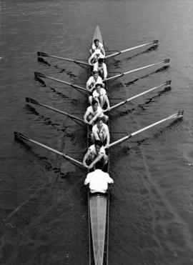 The Thames Cup VIII